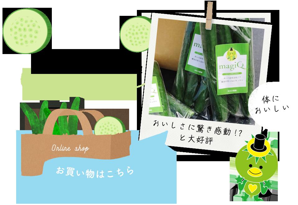 banner_online_shop