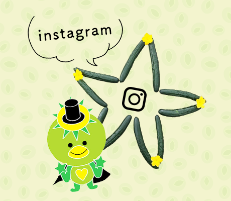 half_bnr_instagram
