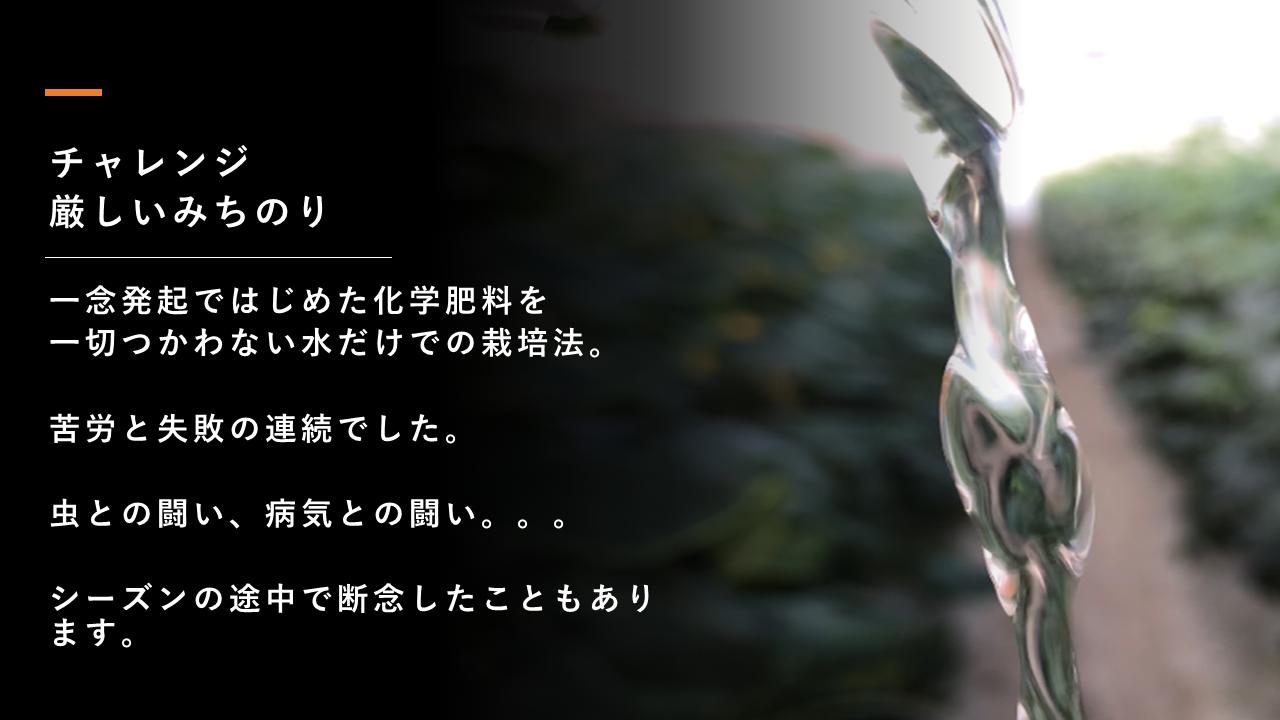HPのトップページ内容⑤